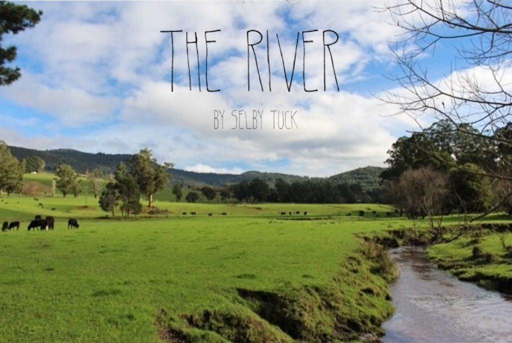 The-River-Selby-Tuck