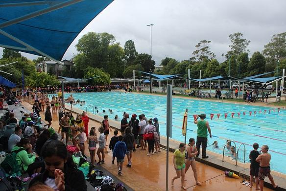 College Swimming Sports