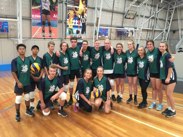 Year 8 Volleyball